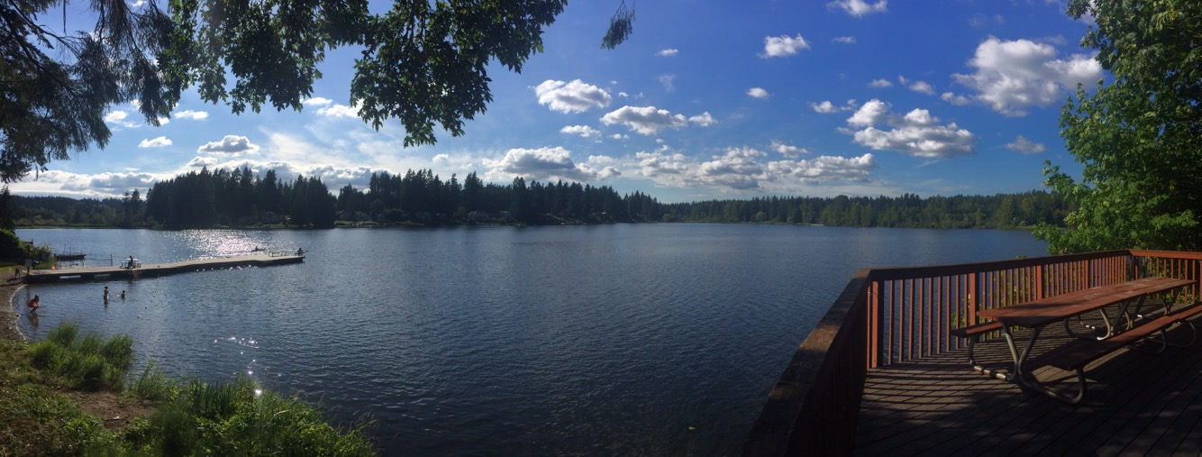 Panoramic with Lake - Lara Brown